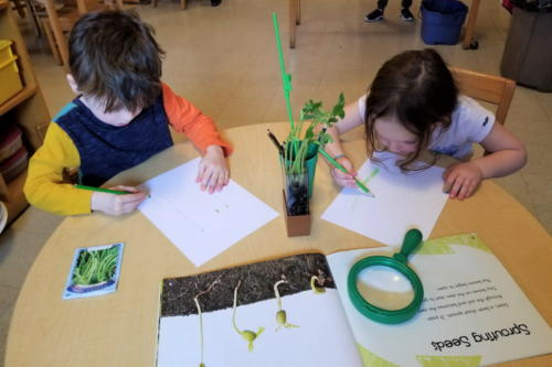 Preschool-Green-Room-042