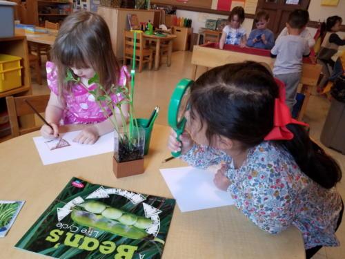 Preschool-Green-Room-043